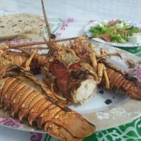 dinner lobster