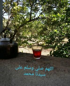 tea and good words 2